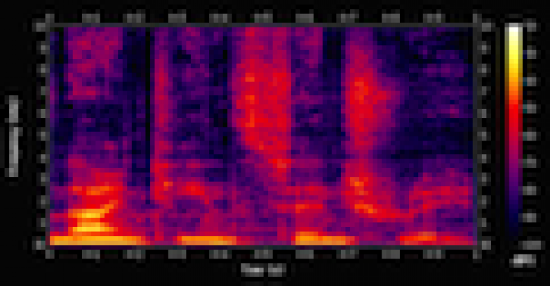Audio spectrograph display, which graphs frequency distribution of an audio signal over time